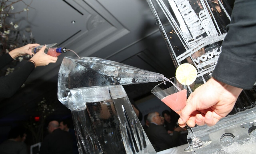 Ice luge at party