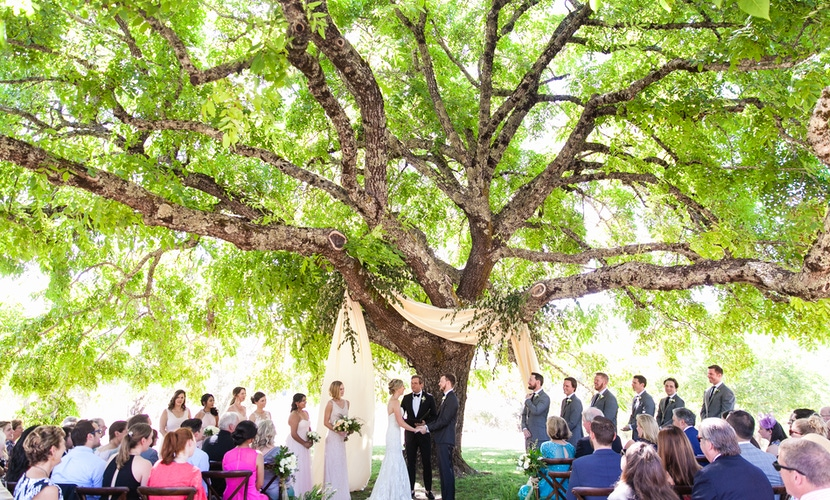 Beautiful outdoor wedding venue with large bright green trees