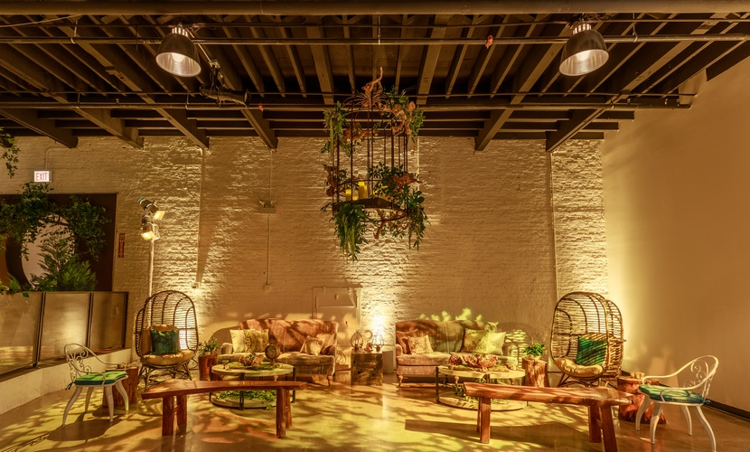 Rustic chairs and benches with green leaves and yellow lighting