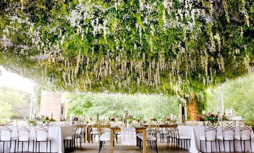 Best ceiling decor ideas - CHICAGO BOTANIC GARDEN WEDDING