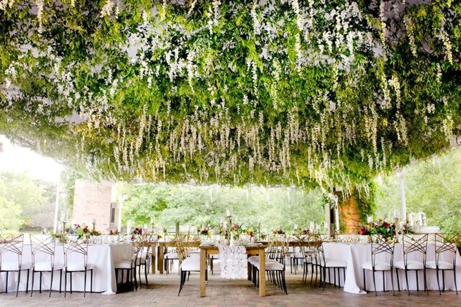 Best ceiling decor ideas - CHICAGO BOTANIC GARDEN WEDDING