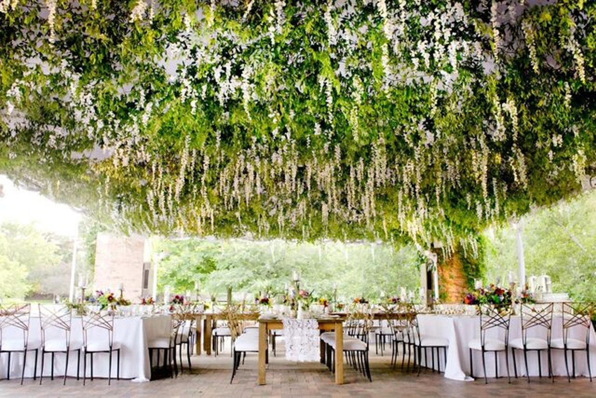 Chicago Botanic Gardens party