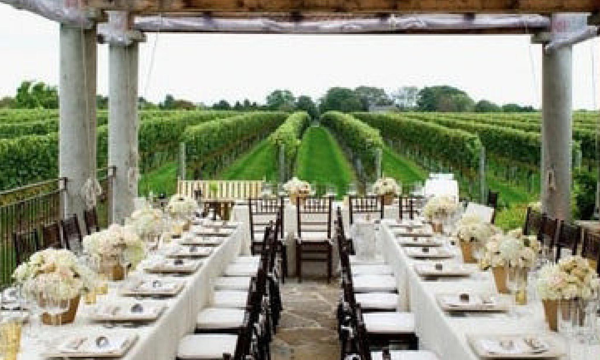green vineyard view dinner reception in hamptons