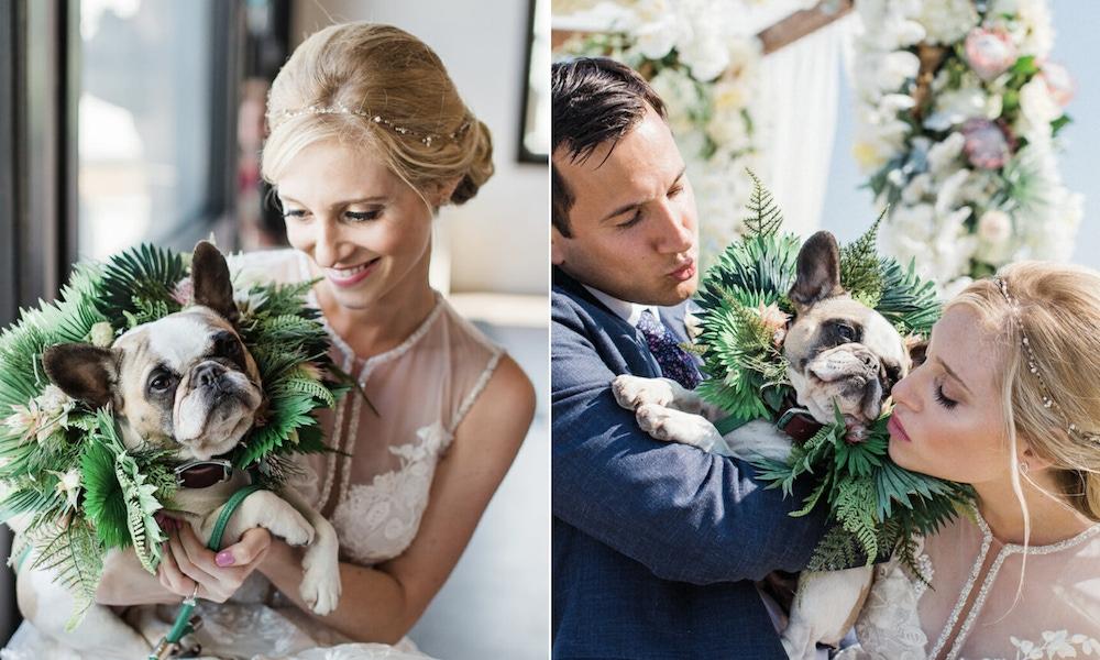 Couple on wedding day with dog