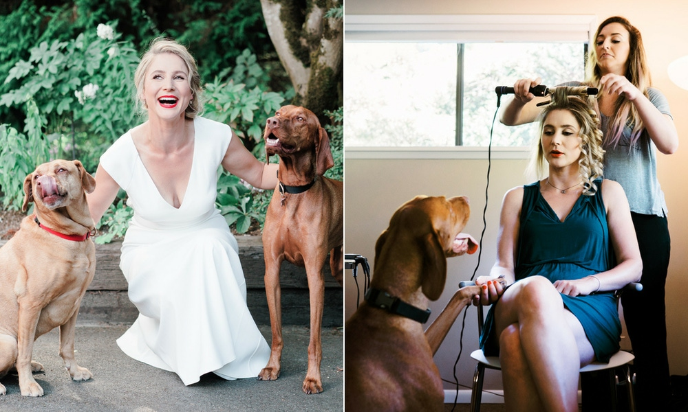 Bride with dogs on her wedding day