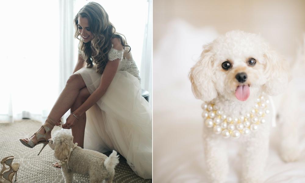 Bride on wedding day with dog