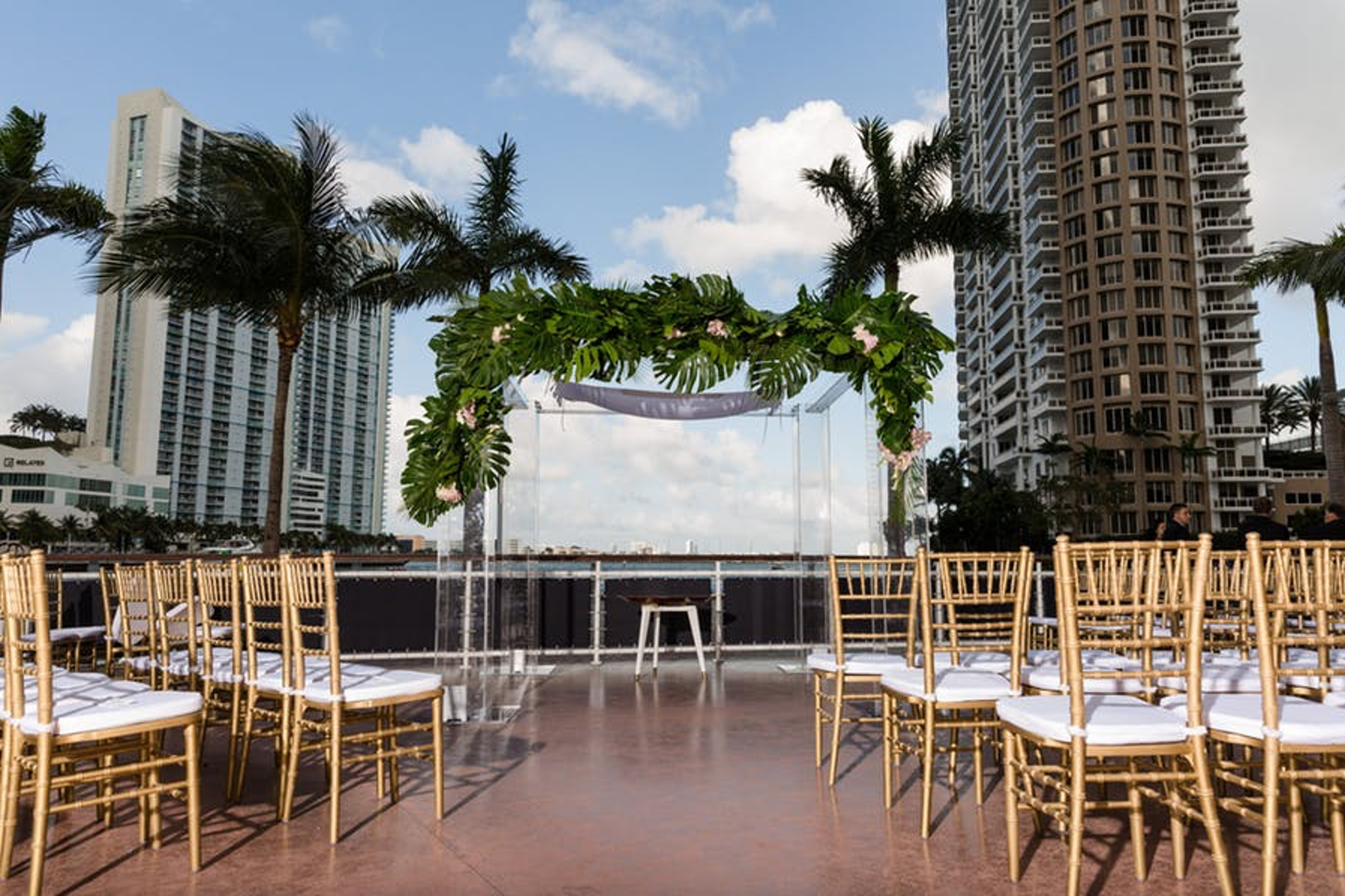 City view with palm trees at Cipriani Downtown Miami