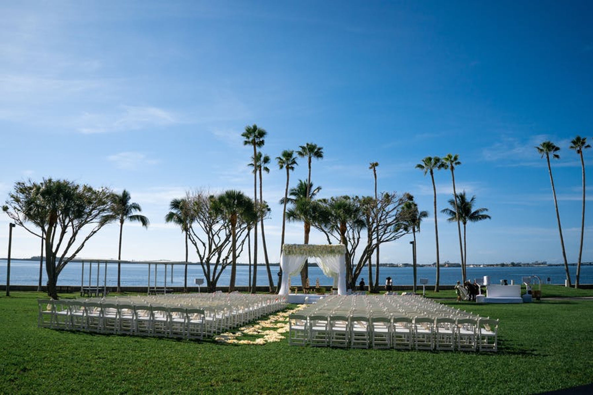 Wedding in front of palm trees and beach