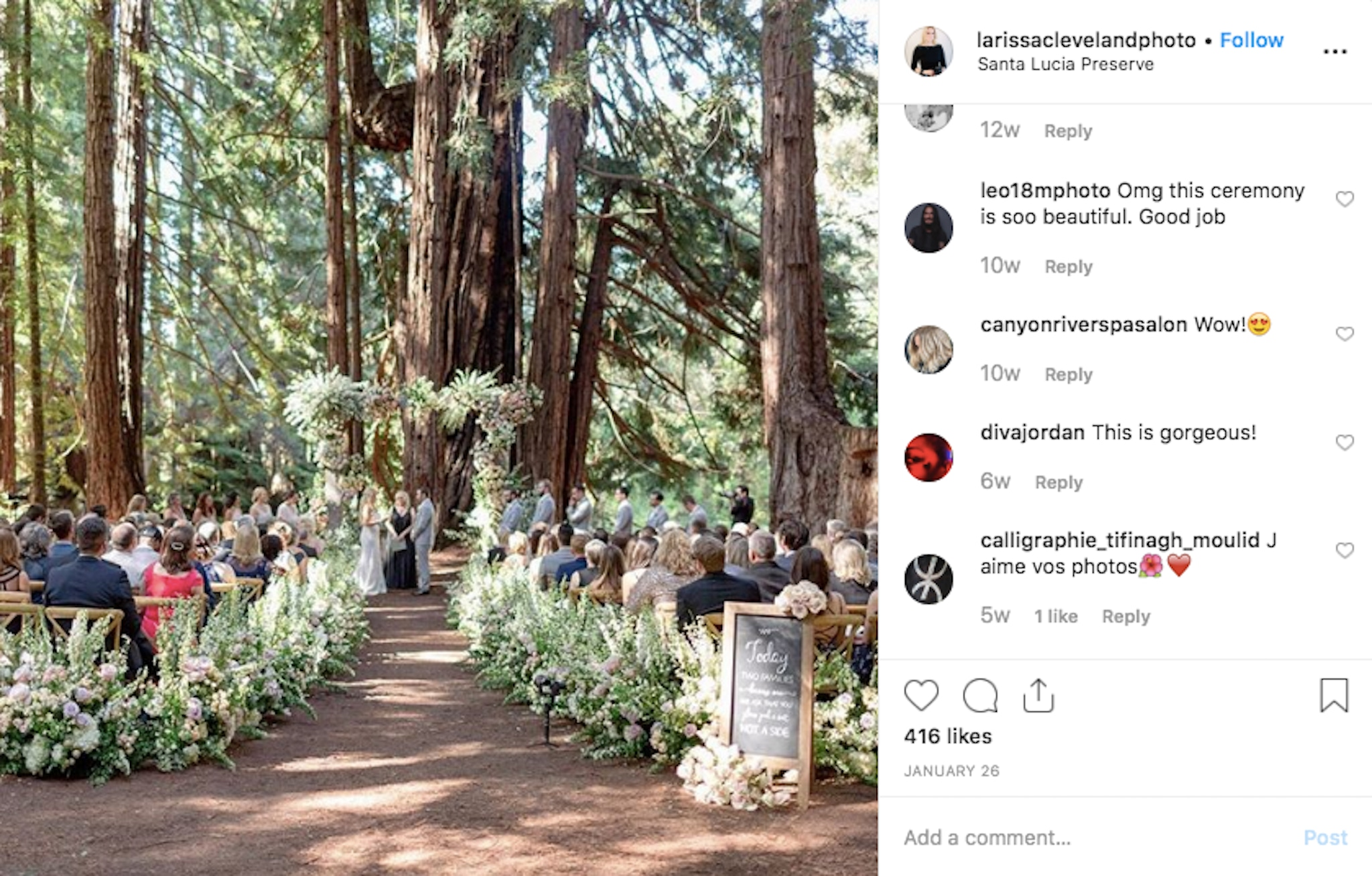 outdoor wedding with big trees and greenery