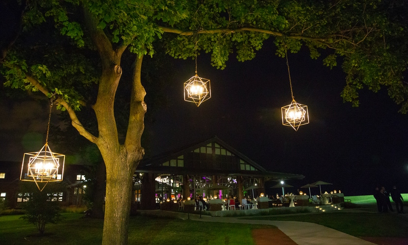 Trees with lanterns in the night