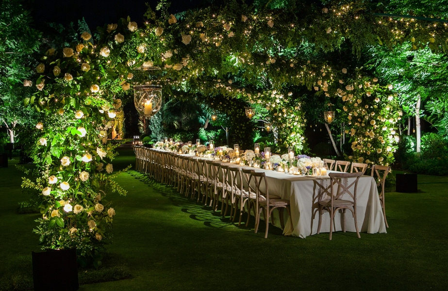Long table surrounded by leaves and vines in a circular arch