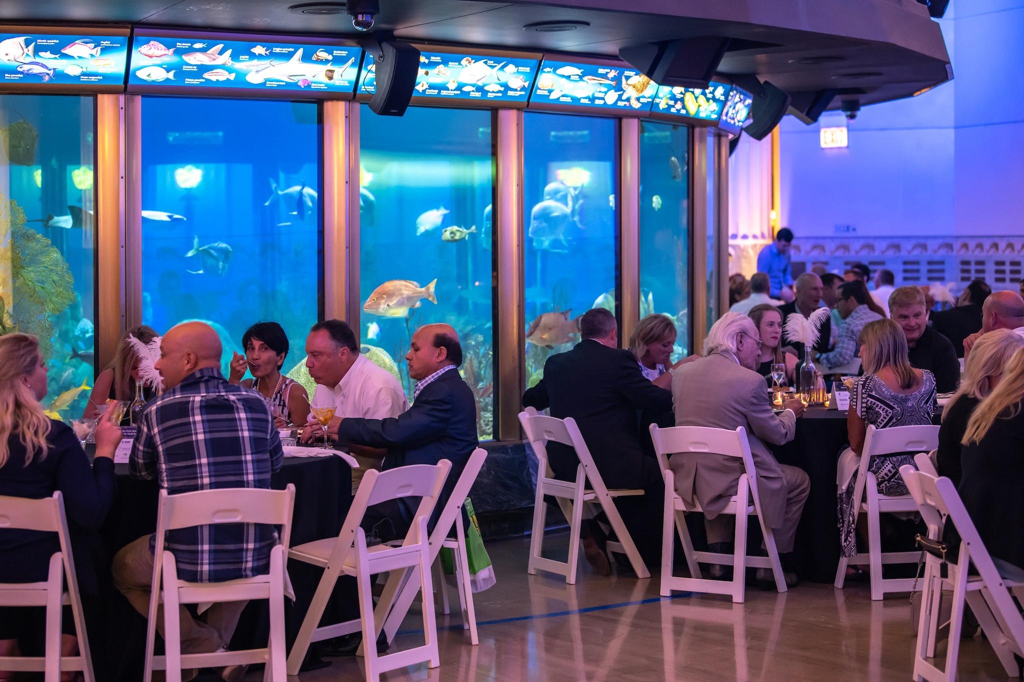 Abbott Oceanarium at the She'd Aquarium Chicago holiday event