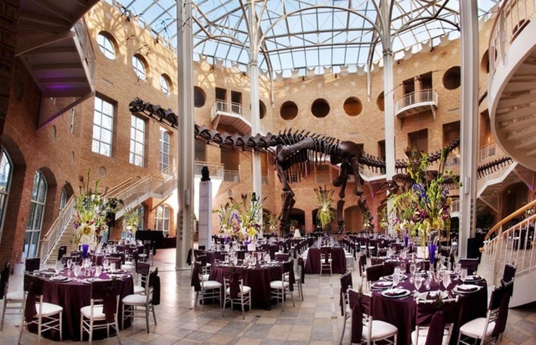 Fernbank Museum of Natural History Atlanta party