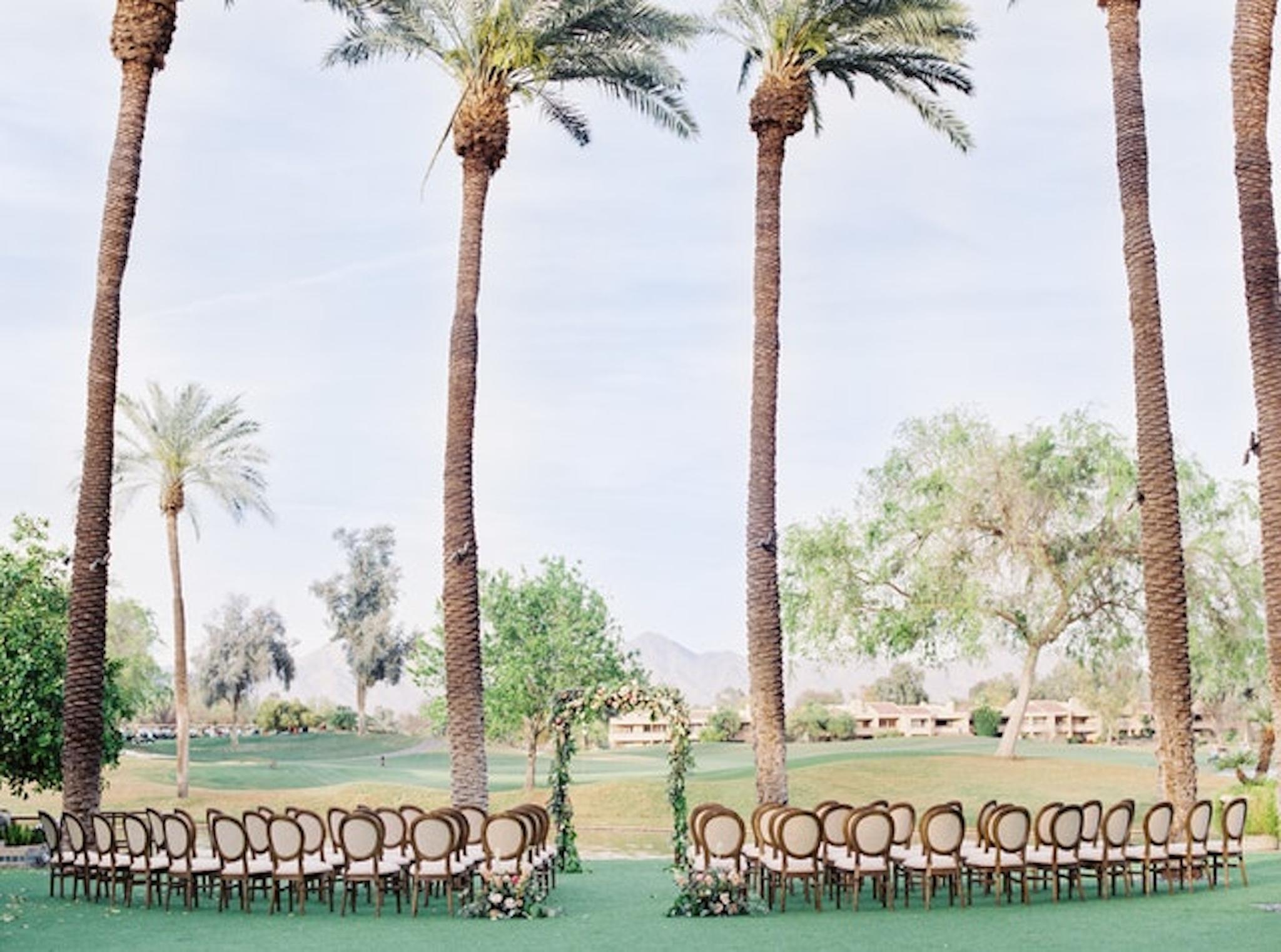 palm trees at Hyatt Regency Scottsdale Resor