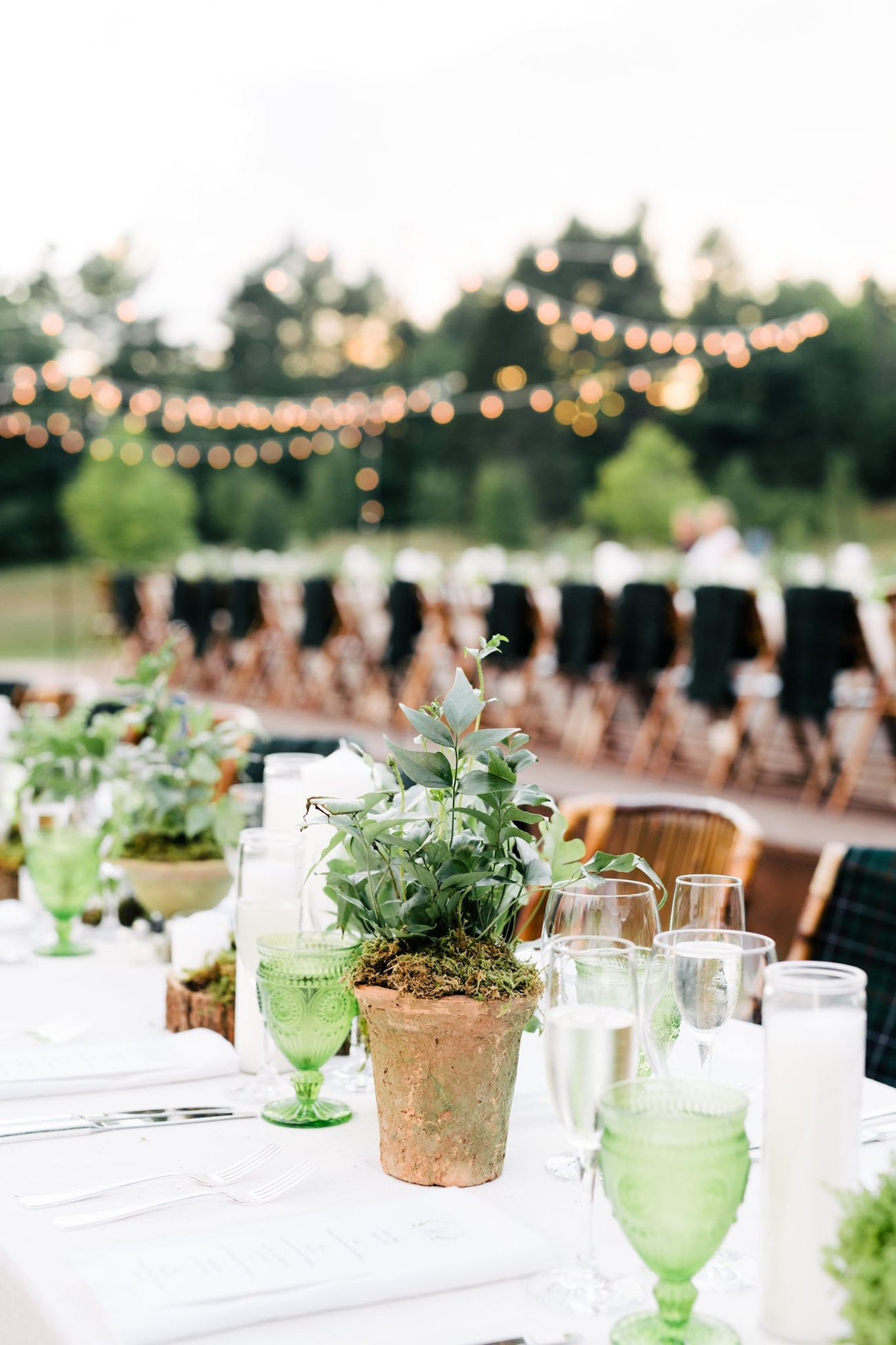 outdoor fall wedding table with plants and green details with white linens