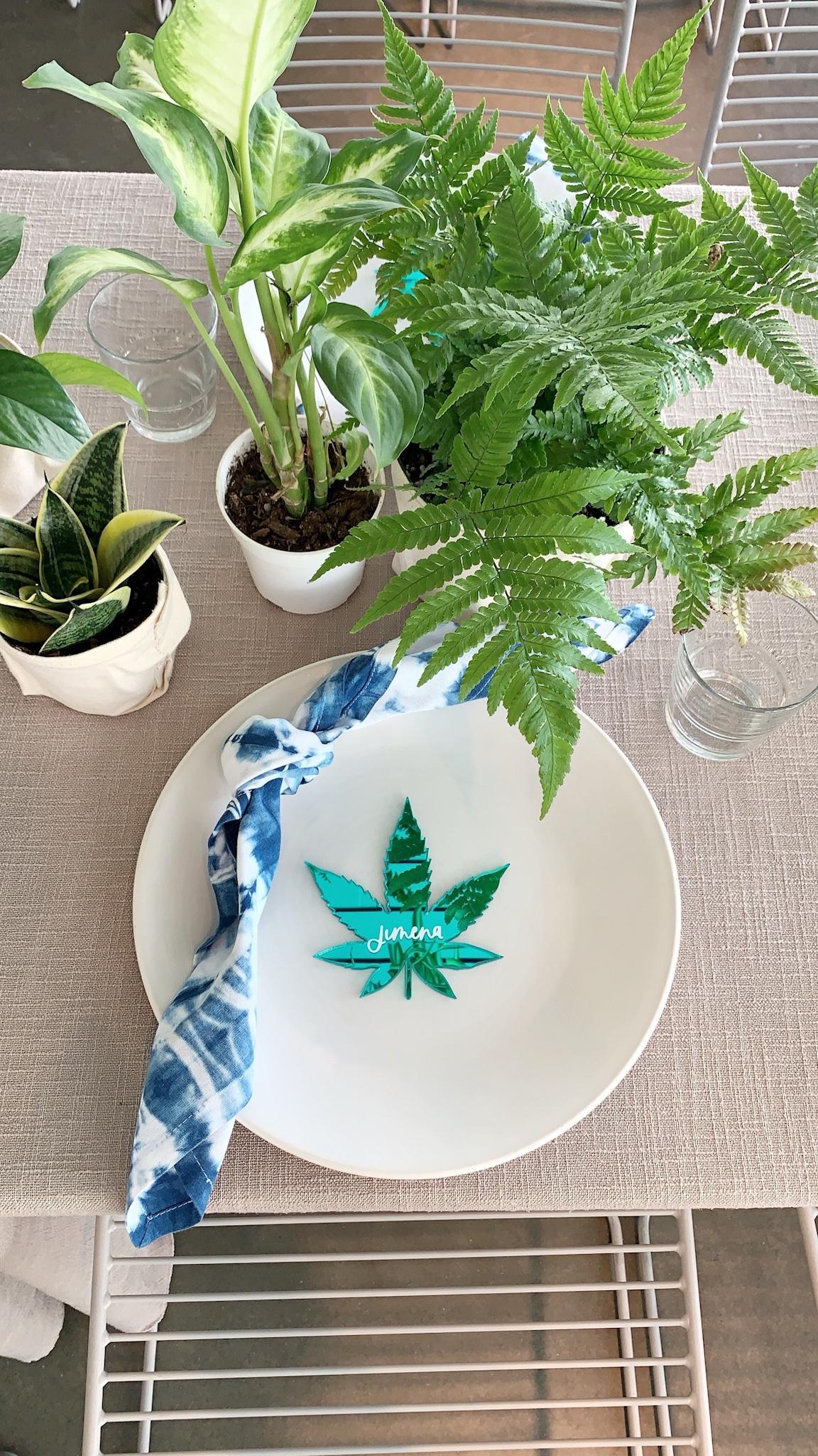 wildchild cannabis seed