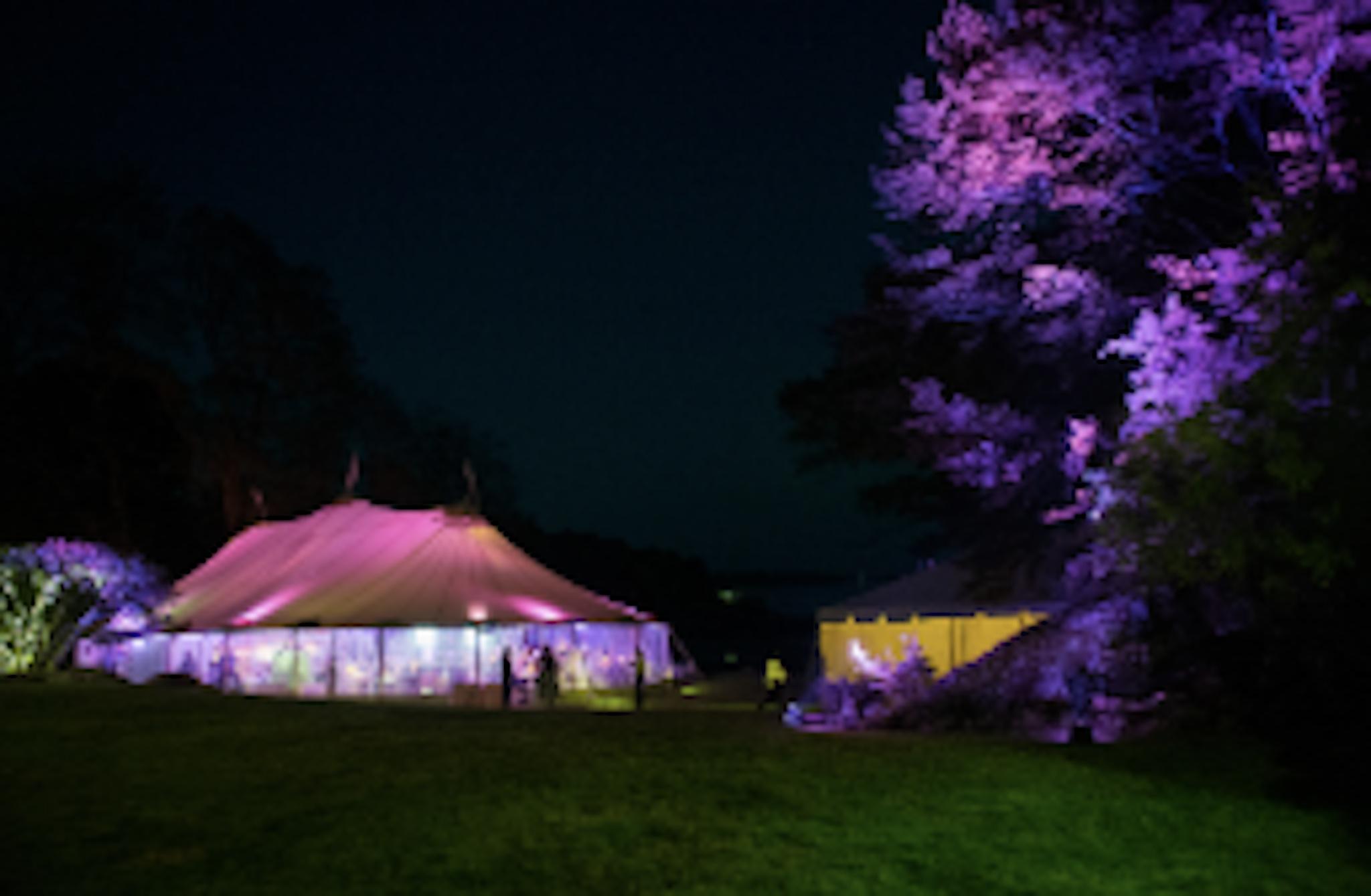 purple lit up tent