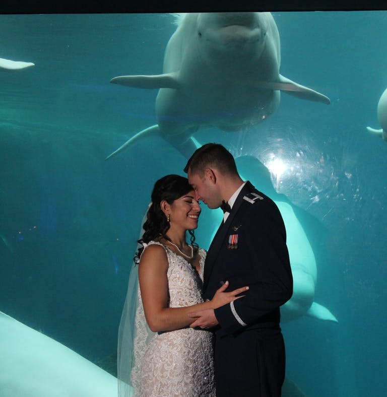 Bride and groom posing in front of shark tank