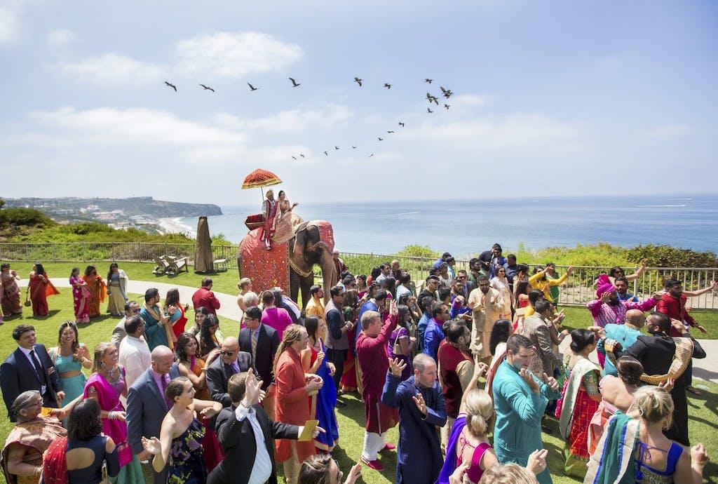 bride and groom ride baraat elephant against ocean backdrop while flock of birds fly overhead