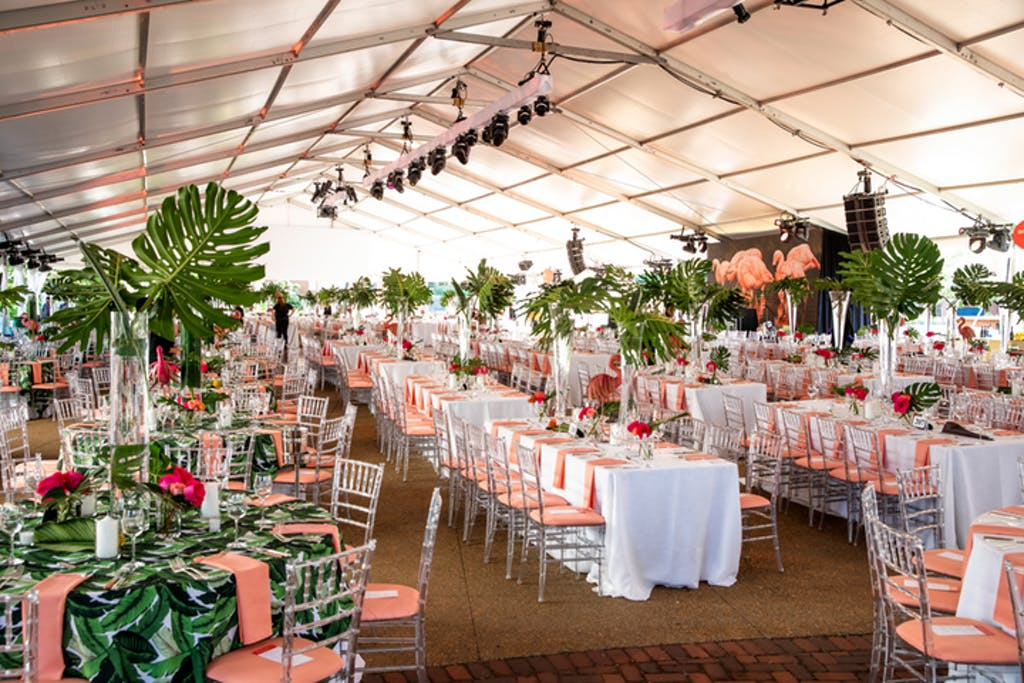 Atrium with white banquet tables, Chiavari chairs with pink cushions, green-leafy tablecloths, and fern décor.