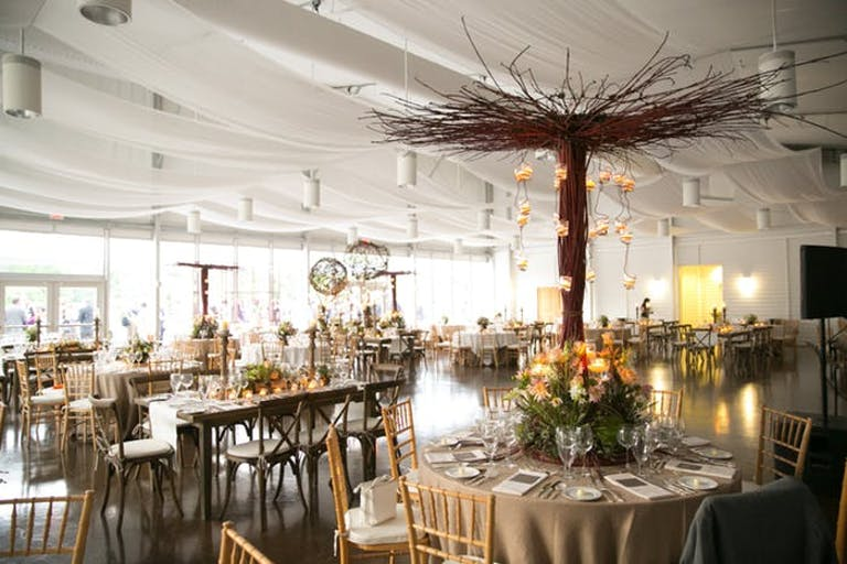 Cloud-like drapery on the cieling with centerpieces made of twigs formed into a tree structure