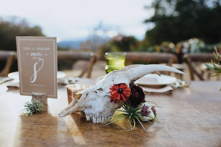 An animal skull sits next to a red flower on a wooden table with the sky in the background