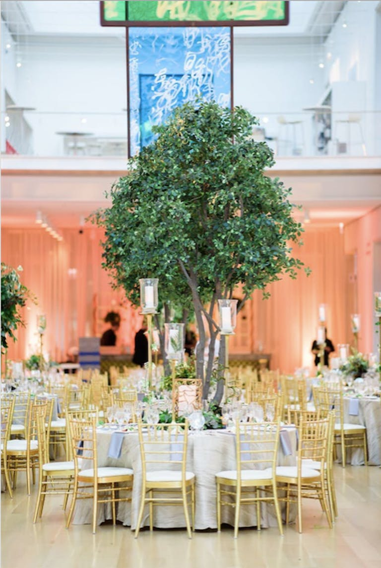 A green tree acts as a centerpiece