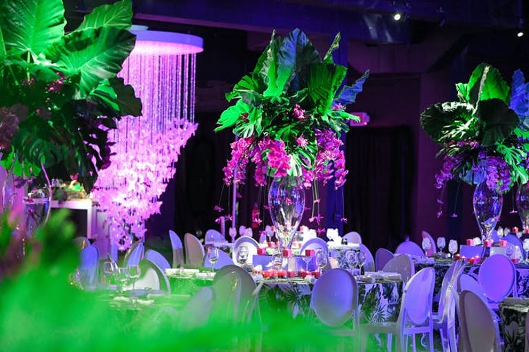 A room washed in a purple light with greenery accents lit up.