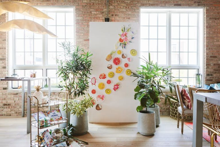 A lofty room with windows and brick walls. A photo backdrop with pieces of fruit drawn on and tall plants on either side.