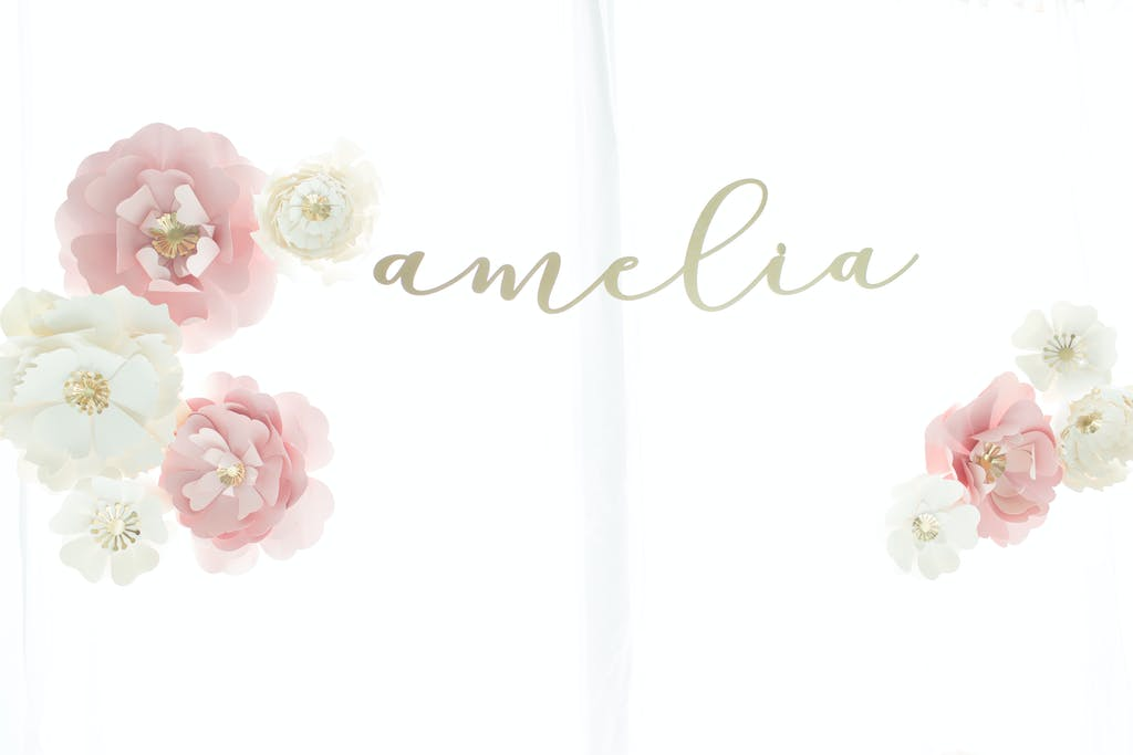 Amelia's First Birthday