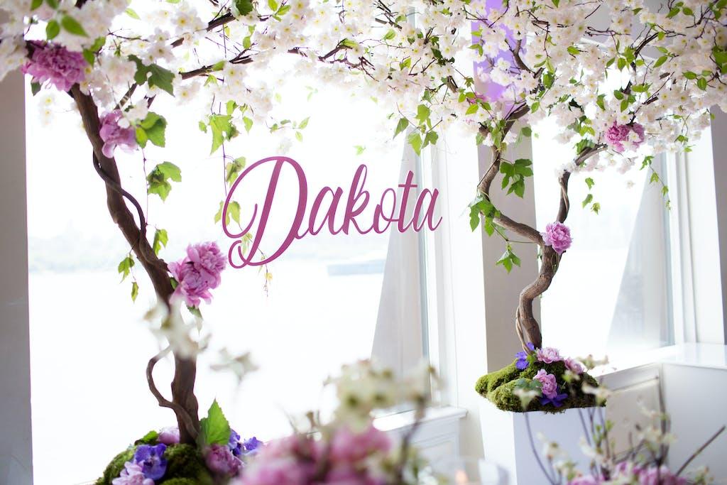 Dakota's First Birthday