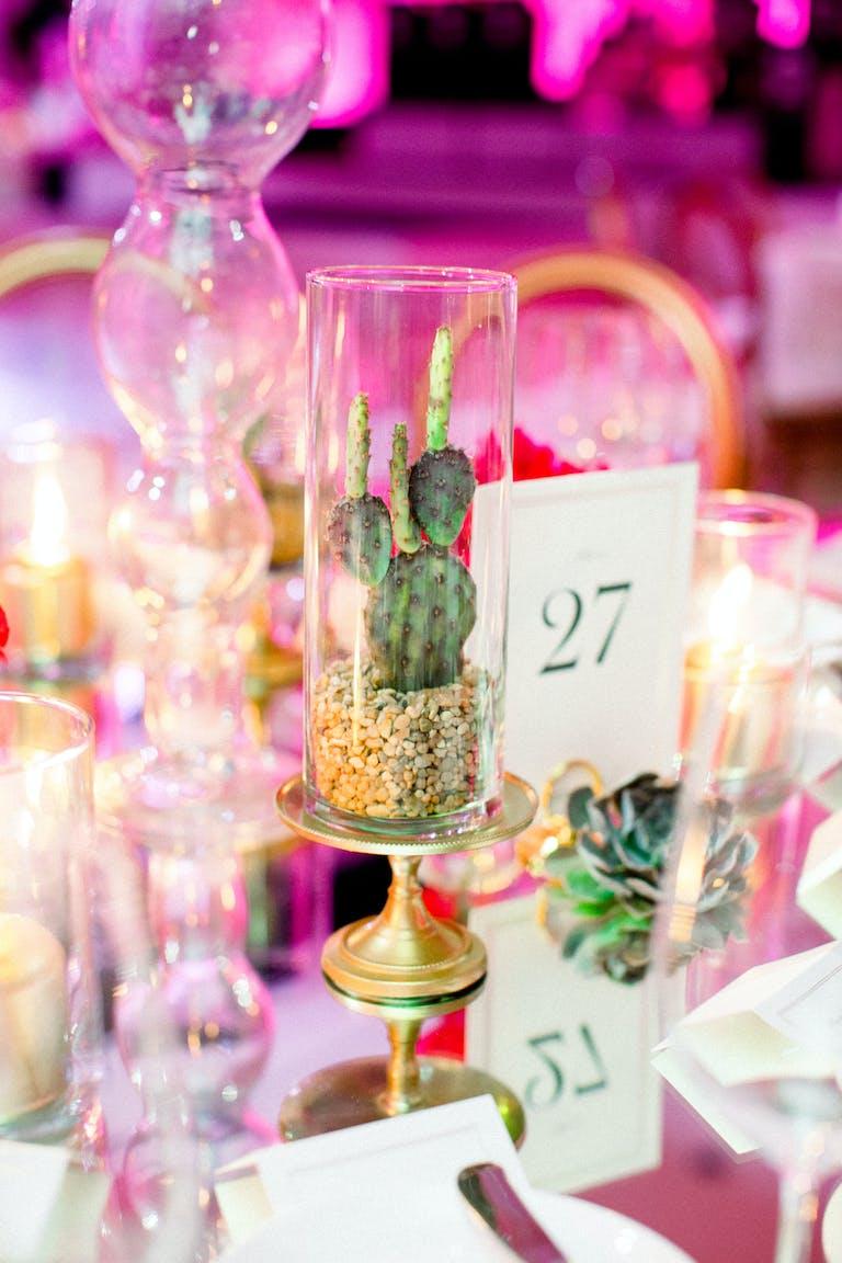 Ritz Carlton Formal Wedding in Marana, AZ With Cactus Centerpieces.