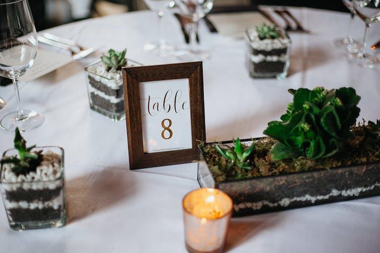 Wedding with Succulent Wedding Centerpieces