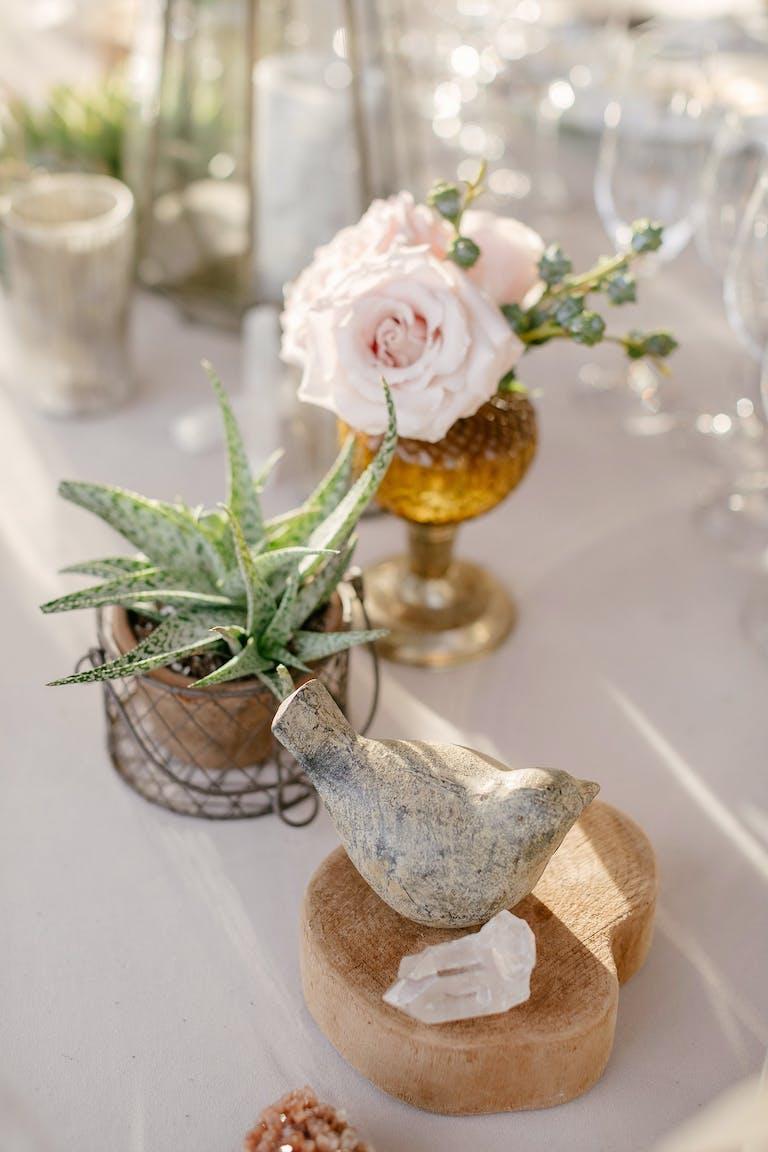 Romantically Intimate Garden Wedding in Sacramento, CA With Rose and Succulent Wedding Centerpieces