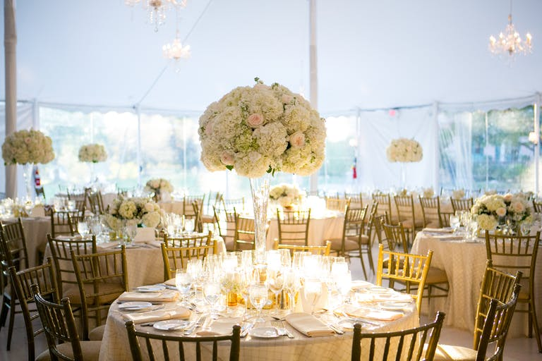 Tented Reception Venue with Towering Hydrangea Wedding Centerpieces and Clear Vases on Banquet Tables