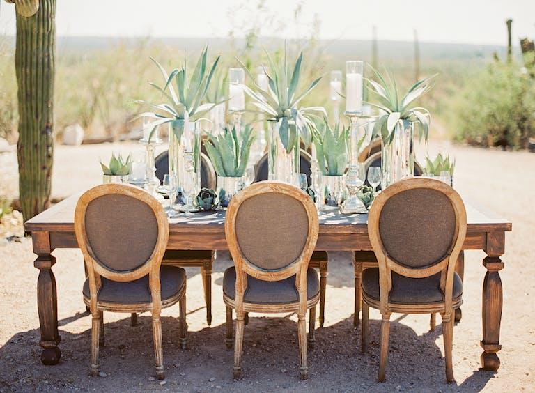 Tanque Verde Ranch Elopement in Tucson, AZ With Succulent Wedding Centerpieces