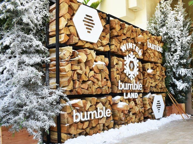 BUMBLE'S WINTER BUMBLELAND | PartySlate