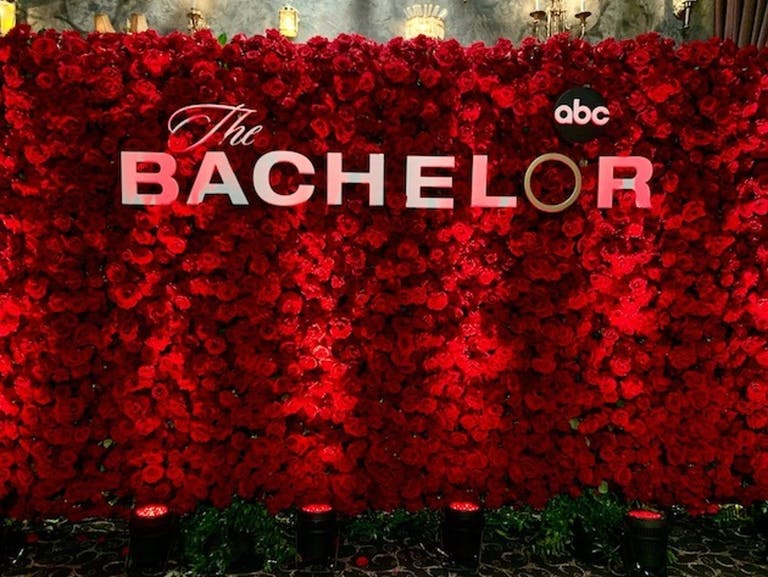 THE BACHELOR PREMIERE | PartySlate