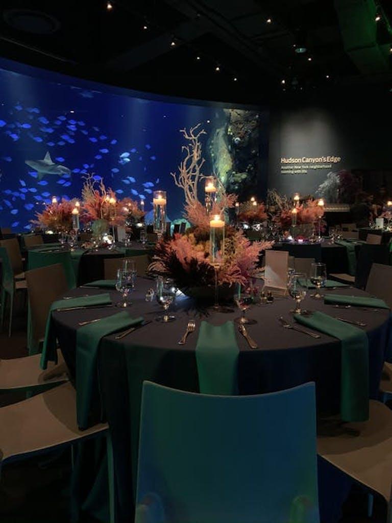 Aquarium green and blue underwater Mitzvah   PartySlate
