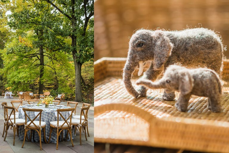 Outdoor Baby Shower With Elephant Décor   PartySlate