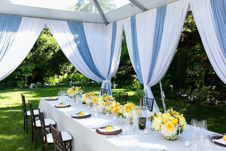 Blue and white backyard micro wedding with yellow floral accents   PartySlate