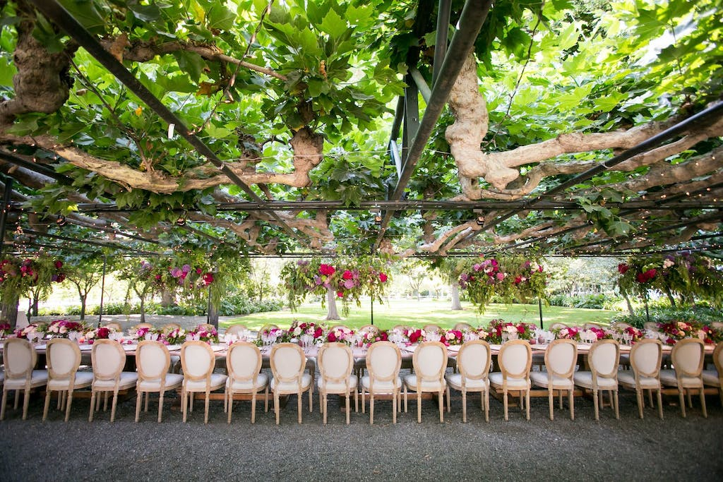 Overhead Canopy of Branches at Botanic Garden Wedding | PartySlate