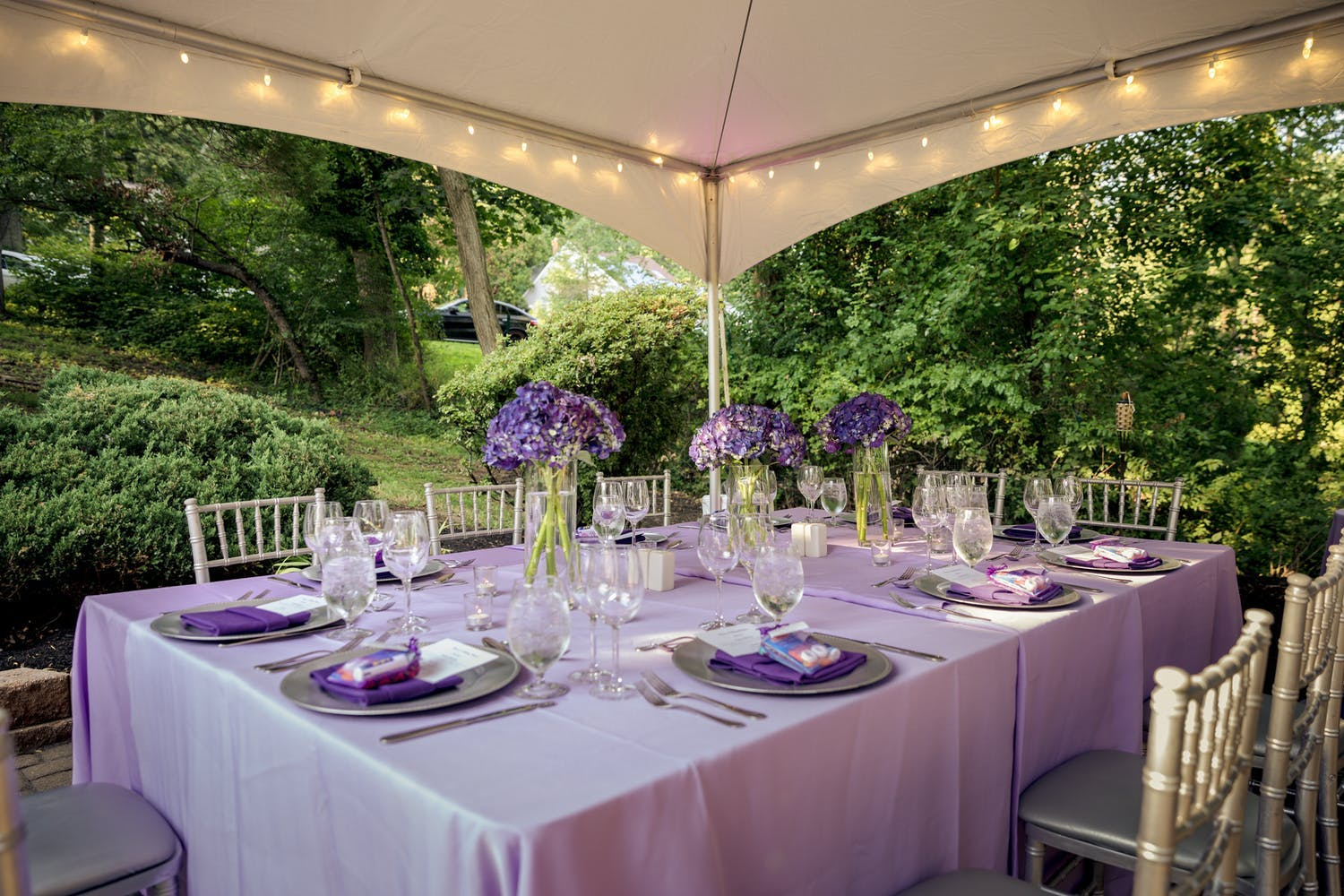 Tented Backyard Birthday Party With Violet Tablescape and Surrounding Greenery | PartySlate