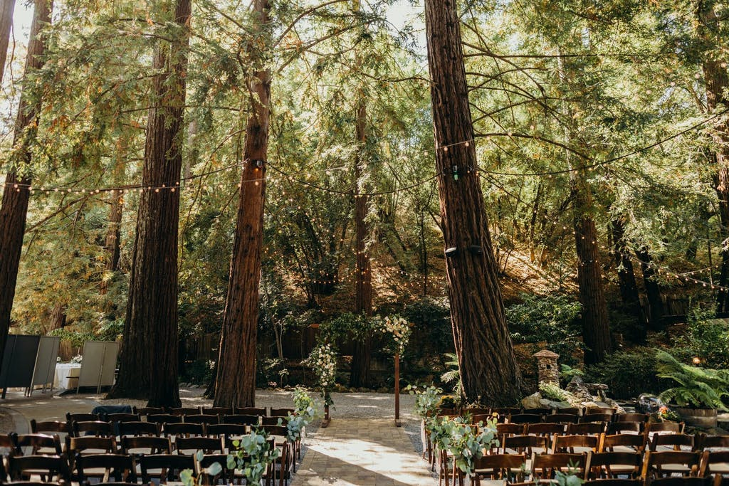 Redwoods Wedding Ceremony With String Fairy Lights | PartySlate