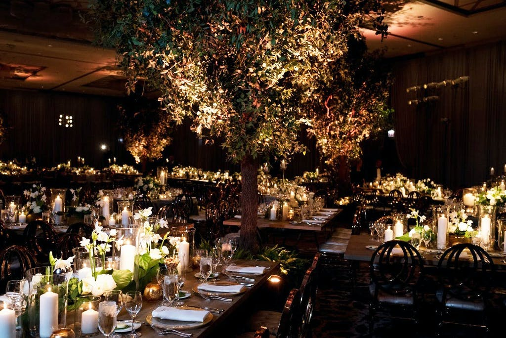 Ballroom With Enchanted Forest Wedding Theme and a Towering Treetop and Candlelight | PartySlate
