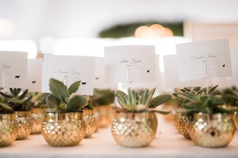 White Wedding Escort Cards Attached to Gold-Potted Plants | PartySlate