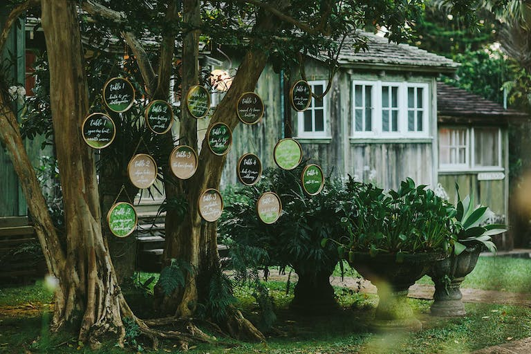 Tropical Wedding With Table Numbers Written on Green and Tan Circles Suspended from a Tree | PartySlate