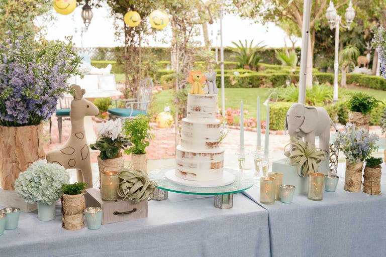 Rustic Zoo Themed Kids' Birthday Party Los Angeles, CA With Rustic Birthday Cake | PartySlate