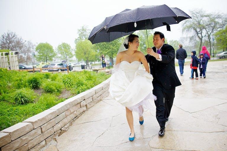 Bride and Groom Walk Through Peggy Notebaert Nature Museum Under a Black Umbrella   PartySlate