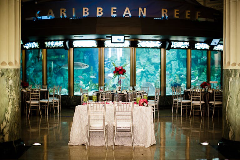 Glam Wedding Reception With Sweetheart Table Positioned in Front of Caribbean Reef Exhibit
